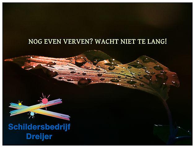 Is uw huis al herfstklaar? - Schildersbedrijf Dreijer Beerta